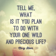 one-wild-precious-life-quote